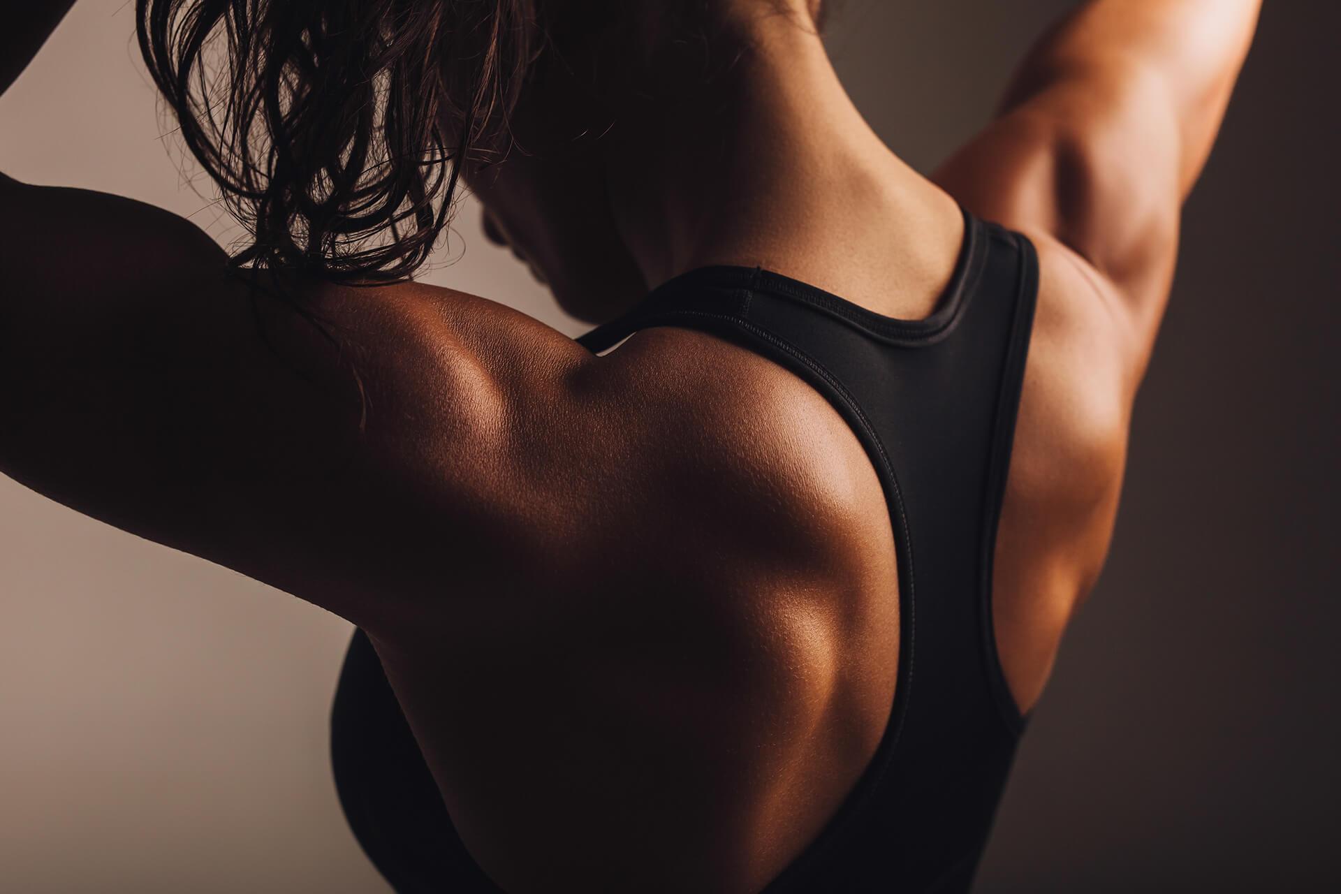 Rückenmuskulatur aufbauen: Dein Weg zu einem starken Rücken | Muskelmacher-Shop