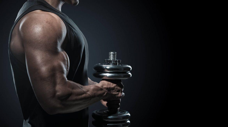 Übungen zum Abnehmen und Tonen der Arme mit Gewichten