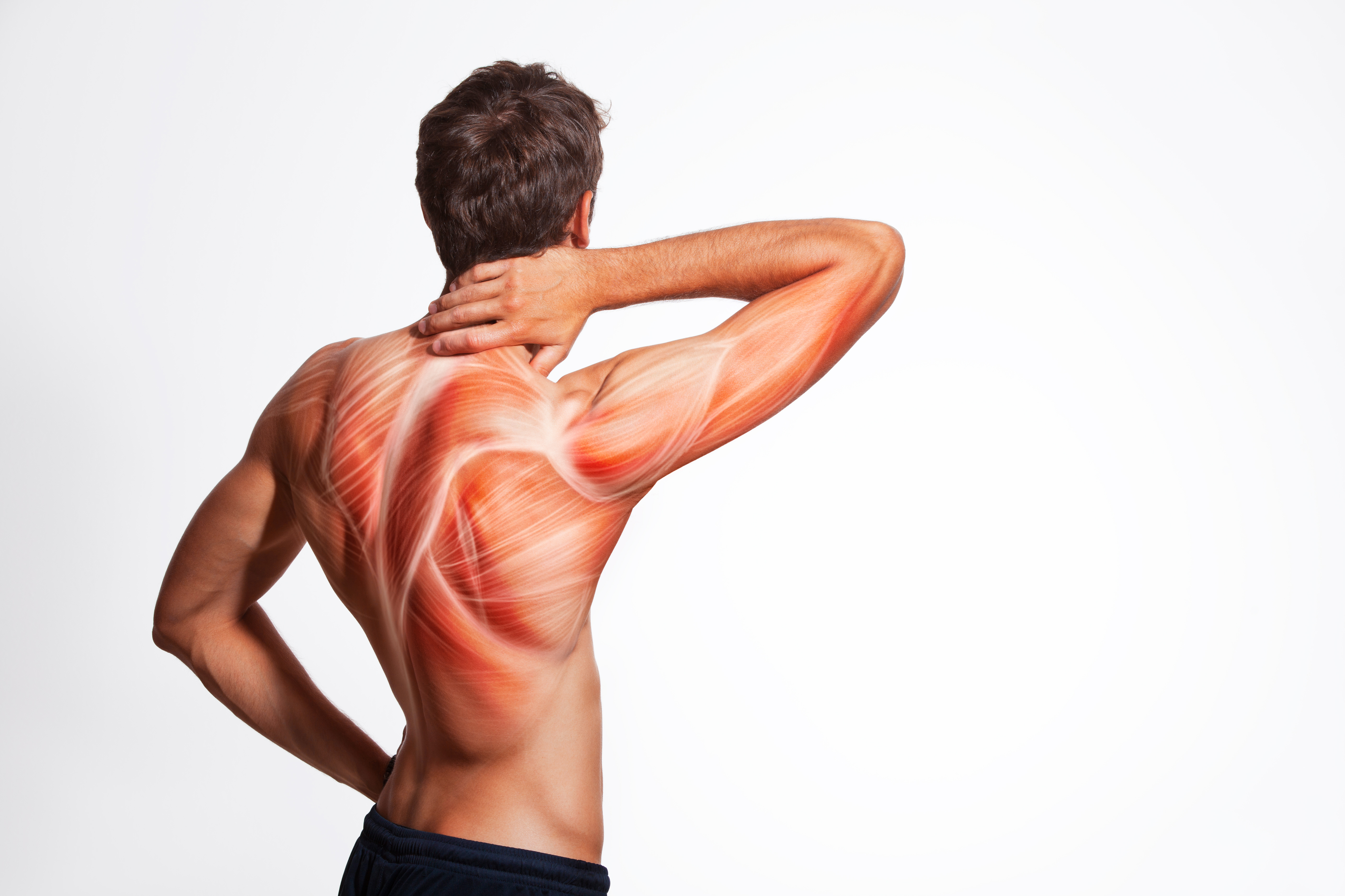 Was hilft gegen Muskelkater?| Muskelmacher-Shop