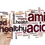 Lysin: Wissen zu der Aminosäure | Muskelmacher – Shop